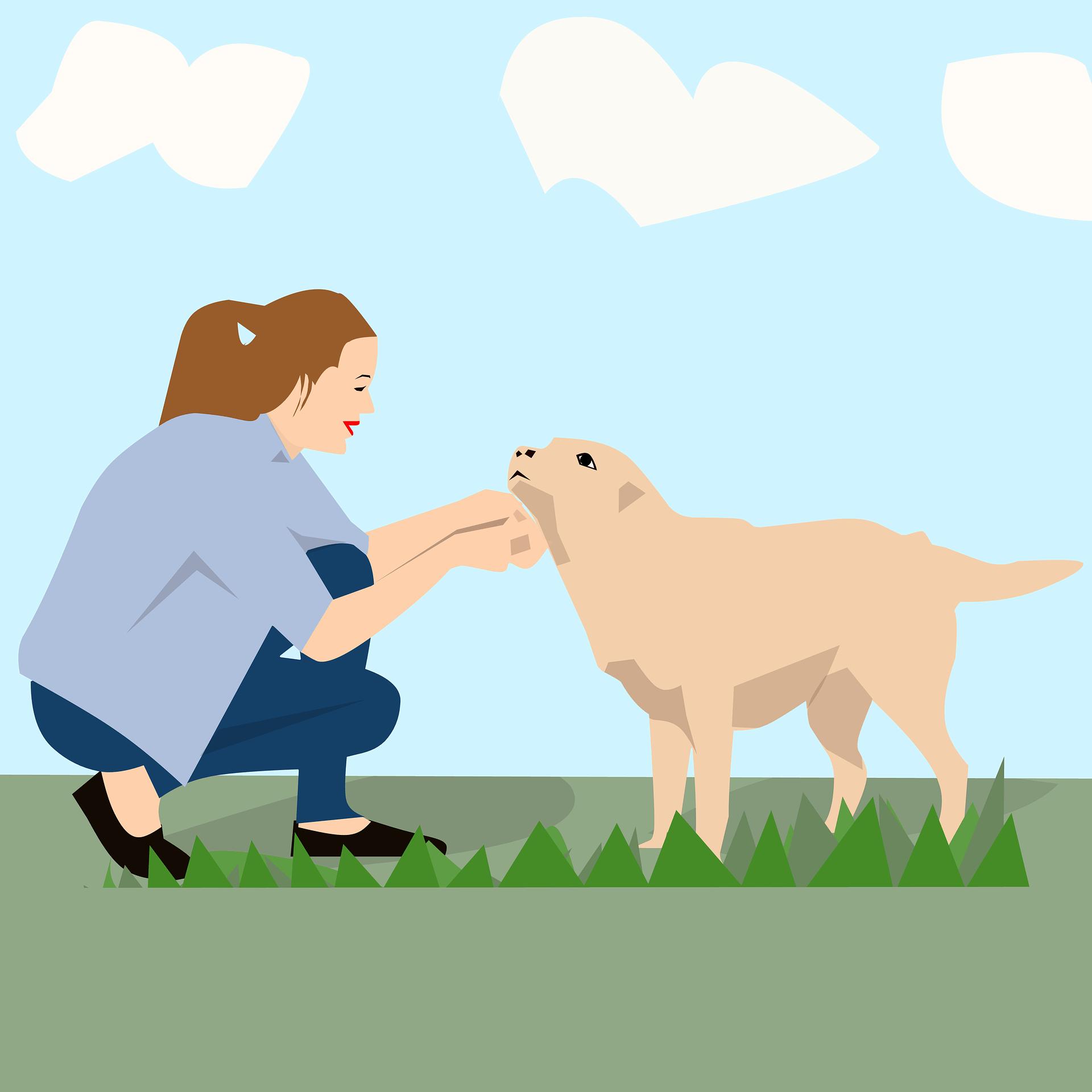 dog-2826918_1920