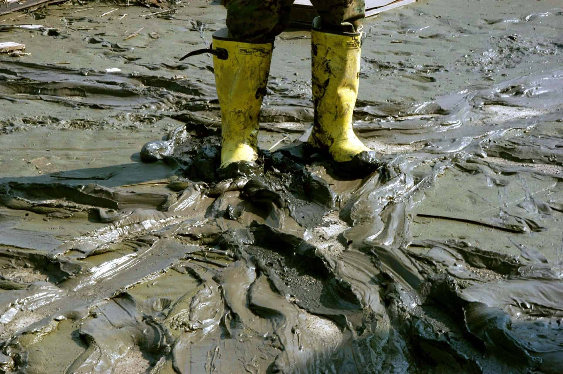 mud-616481_1920